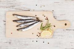 Fresh sardines. Royalty Free Stock Photos