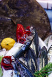 Fresh sardines. On the fihsmonger stall at the local market, Antalya Royalty Free Stock Images