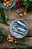 Fresh sardines Royalty Free Stock Photos