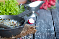 Fresh sardines. Fish with vegetables. Royalty Free Stock Photos