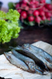 Fresh sardines. Fish with vegetables. Royalty Free Stock Photography