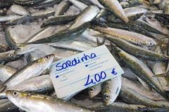 Fresh sardines Stock Photos