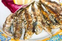 Fresh sardines grilled Royalty Free Stock Photos