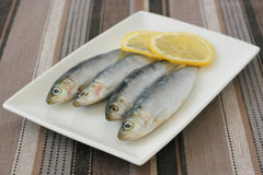 Fresh sardines with lemon Royalty Free Stock Image