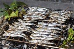 Fresh sardines, mackerel fishes on BBQ grill Stock Photos