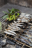 Fresh sardines, mackerel fishes on BBQ grill Royalty Free Stock Images