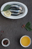 Fresh sardines. Omega 3. Fish with herbs. Mediterranean fish on plate Royalty Free Stock Photo