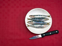 Fresh sardines on a plate with knife, red tablecloth. Stock Images