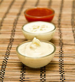 Fresh Sauces Stock Images