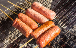 Fresh sausage and hot dogs Stock Images