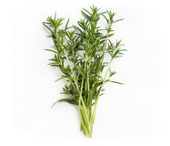 Fresh savory bunch Royalty Free Stock Photography