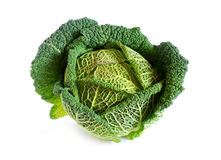Fresh savoy cabbage Stock Photos
