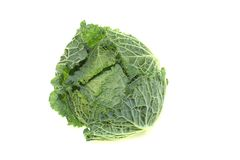 Fresh savoy cabbage Royalty Free Stock Photos