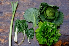 Fresh savoy cabbage and chard Royalty Free Stock Photography