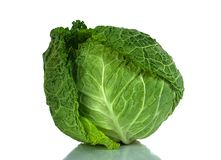 Savoy cabbage isolated on a white background Royalty Free Stock Photos