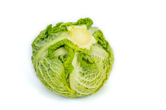 Fresh savoy cabbage isolated in white Stock Photos