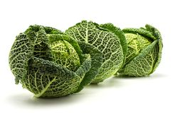 Fresh Savoy cabbage isolated on white royalty free stock images