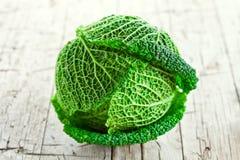 Fresh savoy cabbage Stock Image