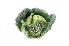 Fresh savoy cabbage Royalty Free Stock Photos