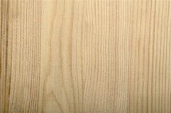 Fresh sawed pine-tree wood texture unpolished Royalty Free Stock Photography