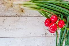 Fresh Scallions radish Stock Image
