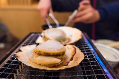 Fresh scallop grilled. Close up of fresh scallop or hotate grilled on the oven in local japanese restuarant Sapporo Hokkaido Japan Stock Images