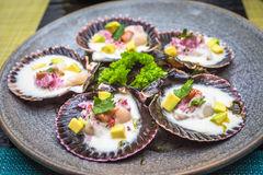 Fresh scallops new peruvian cuisine style Stock Image