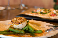 Fresh scallops over green beans. An appetizer or tapas of fresh scallops over green beans Stock Images