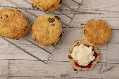 Fresh scone with cream and jam. With copy space royalty free stock photography