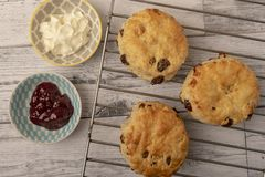 Fresh scones with copy space. On white wooden background stock images