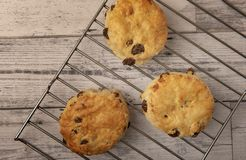 Fresh scones on wire tray with copy space. On wooden background royalty free stock photo