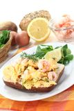 Fresh Scrambled eggs Royalty Free Stock Photos