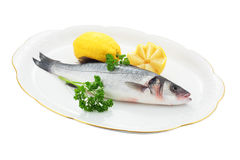 Fresh sea bass Stock Photos
