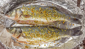 Fresh sea bass for baking Royalty Free Stock Photography