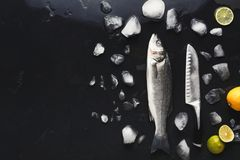 Fresh sea bass with ice at black background. Raw sea bass with ice and knife at black background. Minimalistic mokeup for seafood restaurant or fish market. Top Royalty Free Stock Image