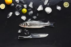 Fresh sea bass with ice at black background. Raw sea bass with ice and knife at black background. Minimalistic mokeup for seafood restaurant or fish market. Top Royalty Free Stock Photos