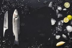 Fresh sea bass with ice at black background. Raw sea bass with ice and knife at black background. Minimalistic mockup for seafood restaurant or fish market. Top stock images