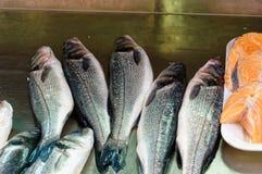 Fresh Sea Bass, salmon of Mediterranean cooking Stock Photo