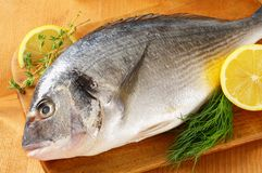 Fresh sea bream on cutting board Stock Photos