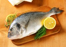 Fresh sea bream on cutting board Stock Image