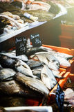 Fresh sea bream at fish market Royalty Free Stock Image
