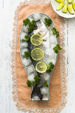 Fresh sea bream on ice Stock Image