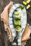 Fresh sea bream on ice Stock Images