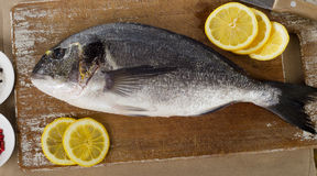 Fresh sea bream with lemon on  wooden cutting board.  Stock Images