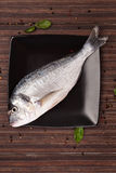 Fresh sea bream on plate, top view. Royalty Free Stock Image