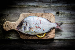 Fresh sea bream on wooden board Royalty Free Stock Images