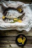 Fresh sea bream on wooden board Royalty Free Stock Photos