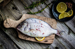 Fresh sea bream on wooden board Royalty Free Stock Photography