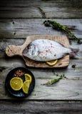 Fresh sea bream on wooden board Stock Photo