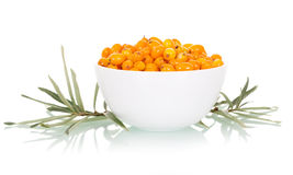Fresh sea buckthorn berries in white bowl closeup isolated Royalty Free Stock Images